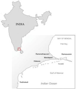 Eurocosmetics Fig 2 Map India and survey areas SCI1 256x300 Searching for seagrape seaweed in Indian waters: a nun scientist's tale of passion and perseverance